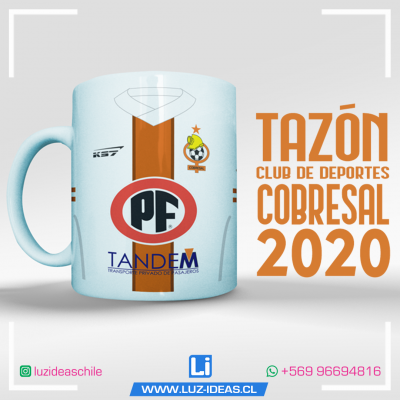 15--COBRESAL-2020--LUZ-IDEAS